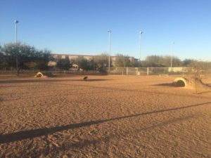 Tucson Silverbell Dog Park